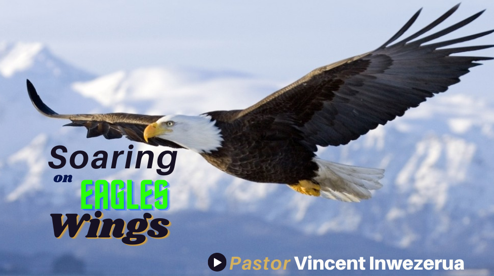 Soaring On Eagles Wings Image